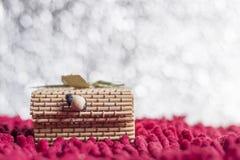圣诞节概念 在bokeh背景的礼物盒竹子 图库摄影