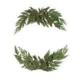 圣诞节概念-构筑与常青柏树的花圈 免版税库存照片