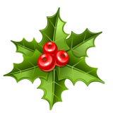 圣诞节槲寄生图标 免版税库存图片