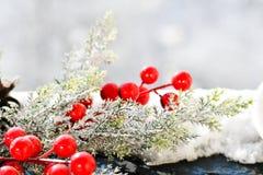 圣诞节槲寄生 库存照片