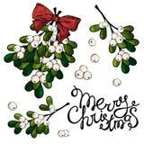 圣诞节槲寄生 向量例证