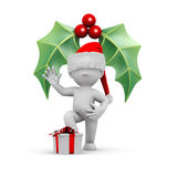 圣诞节槲寄生 免版税库存图片
