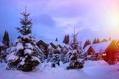 圣诞节横向noel结构树冬天 免版税库存照片