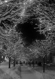 圣诞节正方形在Banska Bystrica 免版税图库摄影