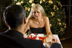 圣诞节正餐 免版税库存图片