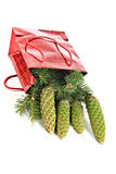 圣诞节毛皮纪念品结构树 免版税图库摄影