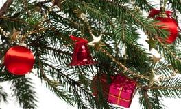 圣诞节毛皮结构树 免版税图库摄影
