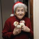 圣诞节滑稽的高级妇女 免版税库存照片
