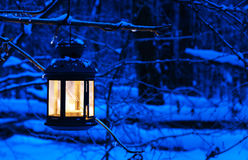 圣诞节灯笼在冬天森林里 库存图片