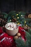 圣诞节热的杯子与棒棒糖、奶油、核桃和被编织的套头衫的巧克力 图库摄影