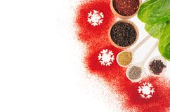 圣诞节烹调-不同的干香料,新鲜的蔬菜沙拉,作为装饰边界的雪花,顶视图 免版税库存照片