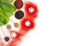 圣诞节烹调-不同的干香料,新鲜的蔬菜沙拉,作为装饰边界的雪花,顶视图 免版税库存图片