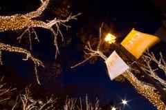 圣诞节照明omotesando东京 免版税库存照片