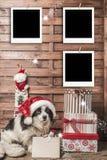 圣诞节照片框架 库存照片