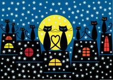 圣诞节猫背景 免版税库存图片