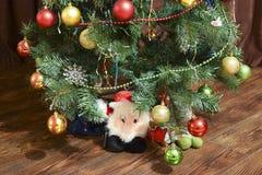 圣诞节玩具和装饰品在圣诞树 图库摄影