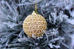 圣诞节玩具在杉树冬天 库存图片