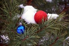 圣诞节玩具在森林 免版税库存图片