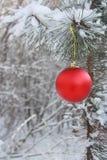 圣诞节球装饰-库存照片 免版税库存照片