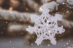圣诞节白色葡萄酒钩编了编织物在一棵多雪的树的分支的雪花 库存照片