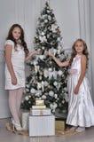 圣诞节的两个愉快的姐妹 库存照片
