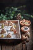 圣诞节的可爱的姜饼村庄与树和雪 库存照片