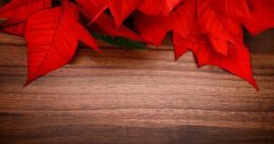 圣诞节的木背景 免版税库存照片