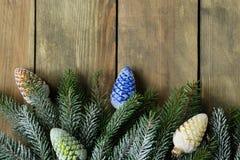 圣诞节的背景 免版税库存照片