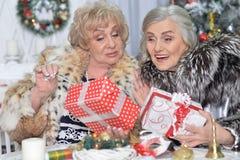 圣诞节的资深妇女 图库摄影