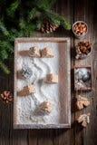 圣诞节的逗人喜爱的姜饼村庄与雪人和树 免版税库存图片