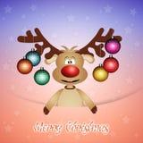 圣诞节的滑稽的驯鹿 免版税库存图片
