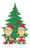圣诞节矮子和杉树 免版税图库摄影
