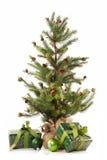 圣诞节礼品一点结构树白色 库存图片