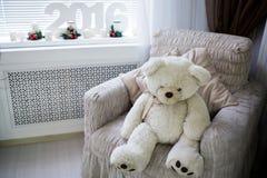 圣诞节礼品隔离白色 极性熊的看起来 免版税图库摄影