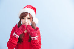 圣诞节秀丽女服衬衣 库存图片