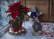 圣诞节窗口装饰 免版税库存照片