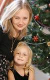 圣诞节系列 库存照片