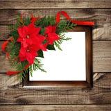 圣诞节红色一品红开花与丝带的壁角安排 免版税图库摄影