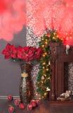 圣诞节红色一品红 库存图片
