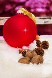 圣诞节红色球,杉木锥体,在雪的核桃 免版税库存照片