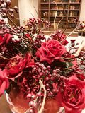 圣诞节红色花 图库摄影