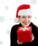 圣诞节纵向 免版税图库摄影