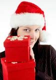 圣诞节纵向 免版税库存照片