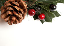 圣诞节绿叶 库存图片