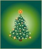 圣诞节绿色偏僻的结构树 免版税库存图片