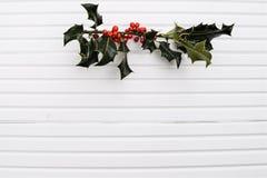 圣诞节绿色霍莉和红色莓果的摄影图象在阳光下在白色木背景 图库摄影