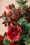 圣诞节罗斯 免版税库存照片