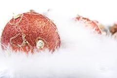 圣诞节羽毛装饰品 免版税库存照片