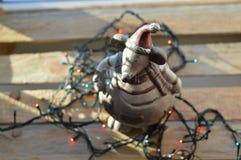圣诞节老鼠 免版税图库摄影