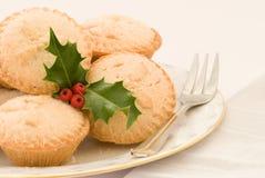 圣诞节肉馅饼 库存照片